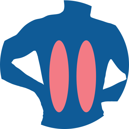 Icon for Rib Pain