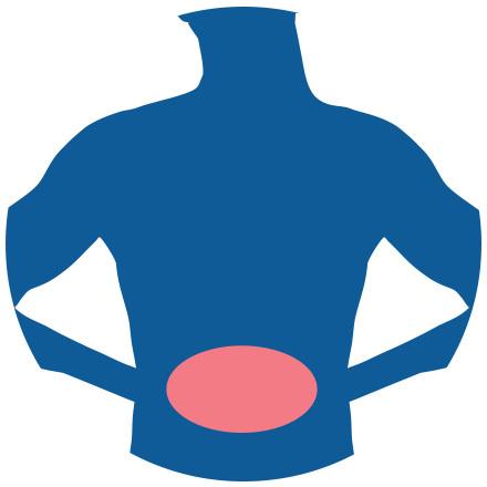 Icon for Irritable Bowel Syndrome (TCM)